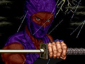 ninja-gaiden-main